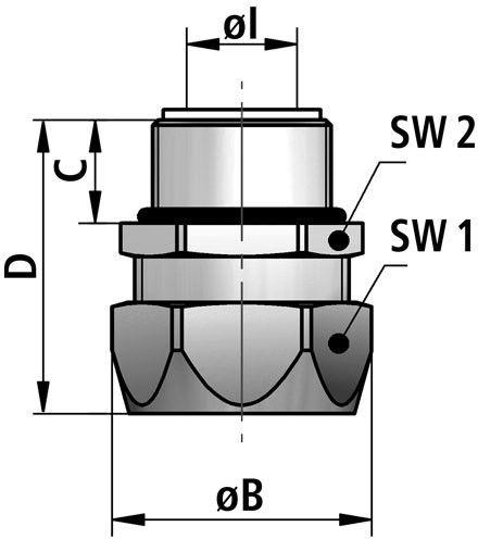 EG-P diagram